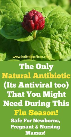 The Only Natural Antibiotic That You Might Need During This Flu Season(Safe For Newborns too)