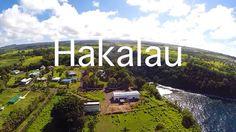 A short video of our property in beautiful Hakalau, Hawaii