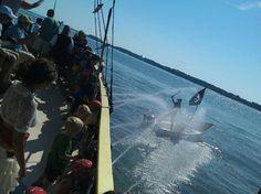 Pirates of Hilton Head Island - a pirate cruise for kids