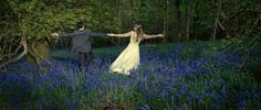 #Bluebell wood  #spr