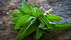Eliminate Pesky Odors With This All-Purpose Fresh Sage Cleaning Spray