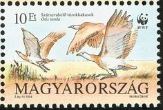 Great Bustard stamps - mainly images - gallery format