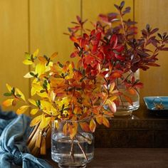 19 ideas for autumn decorations to make yourself enrich the interior -  Even if it is warm, sunny and pleasant, summer is almost over and it was time to look at some ideas for fall decorations.