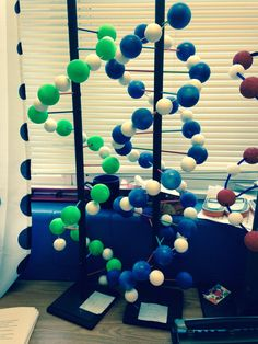 More DNA models! We also added RNA models this year