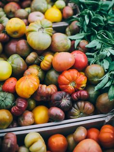 Heirloom tomatoes - just imagine their juicy goodness. LOVE heirloom tomatoes! I am forever spoiled from eating just a regular tomato again....