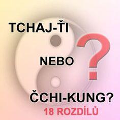 Taiji a Qi-gong v Plzni, kurzy Taichi, výuka Tajči, kursy Tai Chi, Taiči, Tai-či a Qi-gong Plzeň, čchi-kung v Plzni, kvantování, TKDM, matrix energie, kvantová terapie, Kristián Beňo, Petr Chobot, Ayahuasca