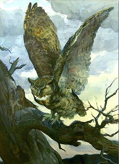 Owl Ogden Pleissner 1905 - 1983 DATE c. 1968 MEDIUM Watercolor DIMENSIONS 29 x 21 inches COLLECTION National Museum of Wildlife Art Collection ACCESSION N