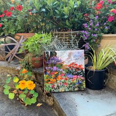 The exciting colour in my potted plants is moving from the garden onto my canvas Oil Painters, Potted Plants, Colours, Canvas, Garden, Painting, Instagram, Art, Pot Plants