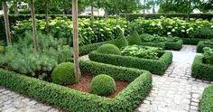 love this boxwood garden Formal Gardens, Unique Gardens, Back Gardens, Small Gardens, Beautiful Gardens, Outdoor Gardens, Contemporary Garden Design, Landscape Design, Boxwood Garden
