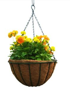 Coco lined baskets are still a hot trend when it comes to hanging pots.