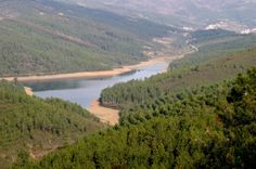 A Reserva Natural da Serra da Malcata situa-se na região de transição da Beira Alta e da Beira Baixa, entre os concelhos do Sabugal e de Penamacor. É uma das maiores elevações de Portugal Continental, com 1075 metros de altitude. O seu principal objetivo é a salvaguarda do lince ibérico, uma espécie em vias de extinção.
