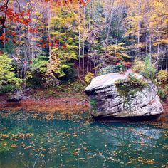 Better catch those fall colors before they leave. #Kentucky #redrivergorge #explorekentucky Photo by @kgknowles by redrivergorgeky