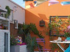 Idee deco terrasse mur coloree