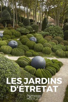 La Normandie est un pays de jardins.Le Jardin Plume, Le Bois des Moutiers, Le Vastérival, Shamrock, Les Jardins d\'Angélique, Le Jardin du Mesnil Gaillard...Mais voici qu\'à côté de ces illustres...