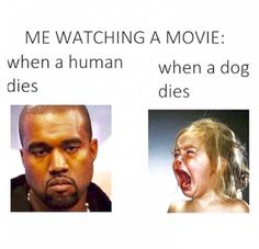 When You Watch a Movie