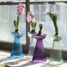 Hyacinth Bulb Vase Recycled Gl Indoor Gardening Plants