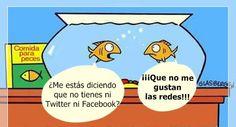 Solo los peces escapan a las redes