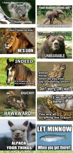So Much Pun - elephant - Visual Puns and Jokes - funny puns - Cheezburger