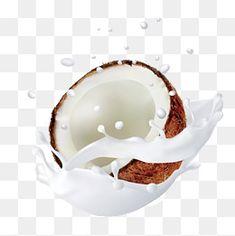 Coconut Vector, Coco Oil, Milk Splash, Paint Splash, Vector Hand, Photoshop Design, Clipart Images, Fresh Fruit, Got7