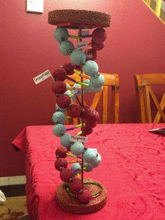 biology projects Double Helix -Biology Project 9 th grade: Biology Projects, Science Fair Projects, School Projects, Class Projects, Science Experiments, 3d Dna Model, Cell Model, Dna Double Helix Model, Dna Model Project