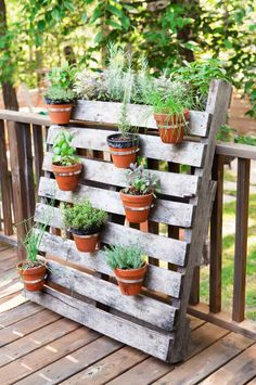 Use hose clamps to secure potted plants to a wood pallet. It adds a nice flare to your backyard patio.