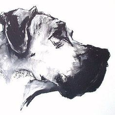 Charcoal On Paper   ON-PAPER-GREAT-DANE-CHALK-CHARCOAL