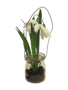 Kleine lente glazen potjes met kunstplantjes om op te hangen, leuk aan een houten stamhanger voor het raam. Of op een houten schijf met meer natuurlijke materialen als decoratie op een tafeltje. www.decoratietakken.nl