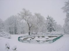Botanical Garde in Iasi Capital Of Romania, Missing Home, Cultural Capital, Public Garden, Winter Wonder, The Province, Botanical Gardens, Beautiful Places, Places To Visit
