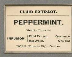 Fluid Extract. Peppermint. Mentha Piperita. Infusion :: Shaker Ephemera