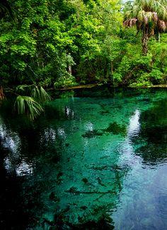 Irridescence, Silver Springs, Florida