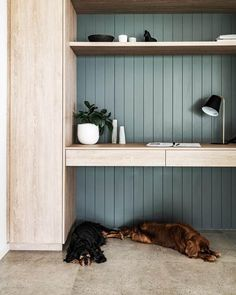 Home office in a renovated homestead near Broken Hill with v-groove panelling painted in a statement shade of blue | Photography: Michael Wee #homeoffice #featurewall #desk #workspace #deskstyle #wfhideas Office Nook, Home Office Space, Study Office, Office Storage, Home Office Design, Home Office Furniture, Home Office Decor, Home Interior Design, House Design