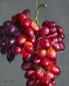 """Hanging Red Grapes"" - Original Fine Art for Sale - © Nance Danforth"