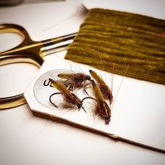 Chenillepupaa #flytying #flyfishing #perhokalastus #perhonsidonta #flugfiske #flugor #kalastus #fishing #fiske #pupa #taimen #harjus #kirjolohi #browntrout #grayling #rainbowtrout #örret #harr #kirbeli #kala