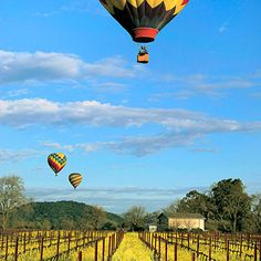 Taste bubbly after a balloon ride in Sonoma County