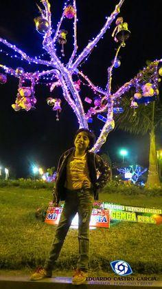 Cibelle en exhibición de arboles navideños.