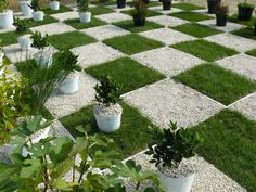 Chessboard Landscaping