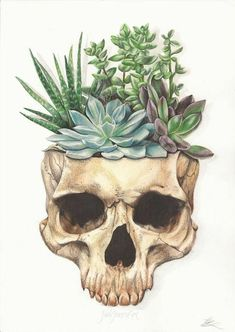 From Death Grows Life. Artwork by Jade Jones – WickedSeraphim From Death Grows Life. Artwork by Jade Jones From Death Grows Life. Artwork by Jade Jones Art Sketches, Art Drawings, Drawings Of Plants, Horse Drawings, Amazing Drawings, Succulent Tattoo, Natur Tattoos, Nature Drawing, Pencil Drawings Of Nature