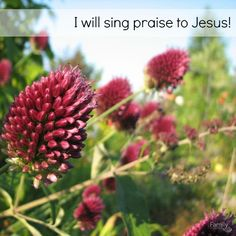 I will be glad and rejoice in you: I will sing praise to your name, O you most High. Psalm 92:2