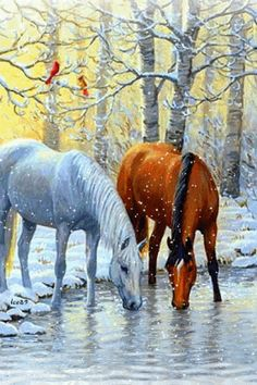 New Nature Wallpaper Phone Trees Winter Wonderland Ideas Pretty Horses, Horse Love, Beautiful Horses, Animals Beautiful, Horse Drawings, Animal Drawings, Winter Horse, Horse Artwork, Equine Art