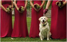 Flower girl posing with bridesmaids | Wedding Photograph Copyright © Julie Gelfand, New York