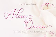 Adora Queen is a modern-style calligraphy font. It features stunning decorative swashes, allowing you to use it in many different... Handwritten Fonts, Calligraphy Fonts, All Fonts, Modern Calligraphy, Business Brochure, Business Card Logo, Brush Lettering, Hand Lettering, Pretty Fonts