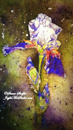 Purple Passion Iris Batik Watercolor class, June 25, 10-4 pm. Beginner's welcome! Class tuition and supplies: $60  I am so thrilled to be offering this technique! This is an original design I created from a photo I took in my yard. The watercolor painting is done on rice paper, reserving color and value with hot wax as we progress through the painting. The painting is approximately 9 x 12, frames up to 11 x 14. I will provide all supplies and paint. You will be so thrilled with your art!