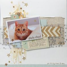 Kitty Photo Shoot - Two Peas in a Bucket  Inspiration - Stars, pale colours, silver and gold.