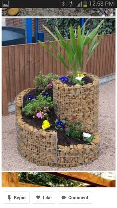 Garden idea....interesting idea.