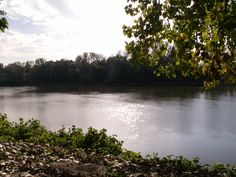 Wabash River, Terre Haute, Indiana Oh how we miss this place! Terre Haute Indiana, Indiana State, Yellow Brick Road, Places To See, The Neighbourhood, To Go, River, Park, City