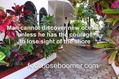 Ocean, Canning, Quotes, Plants, Quotations, Sea, Flora, Plant, Home Canning