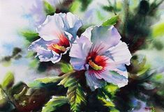 Aquarelles fleurs & fruits - Aquarelle Marichalar Watercolor