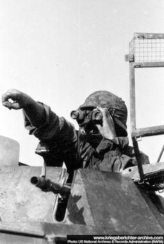 Chef de véhicule dans son Sdkfz 222 de la SS Totenkopf.