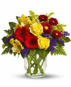 Bold primary colors and a perfect mix of flowers make it great for men and women of all ages. In other words, it's a perfect arrangement. Yellow roses, alstroemeria, and button spray chrysanthemums, red miniature gerberas and matsumoto asters along with purple statice, salal and fern are delivered in a lovely hurricane vase. It's a garden parade to be proud of!