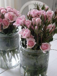pink roses in jars